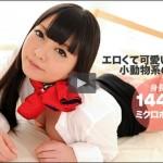 長谷川美裸 桜の木の妖精物語